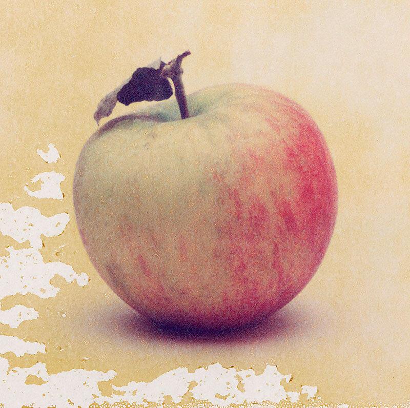 """Stillleben eines Apfels aus der Serie """"von Anfang bis Ende"""""""