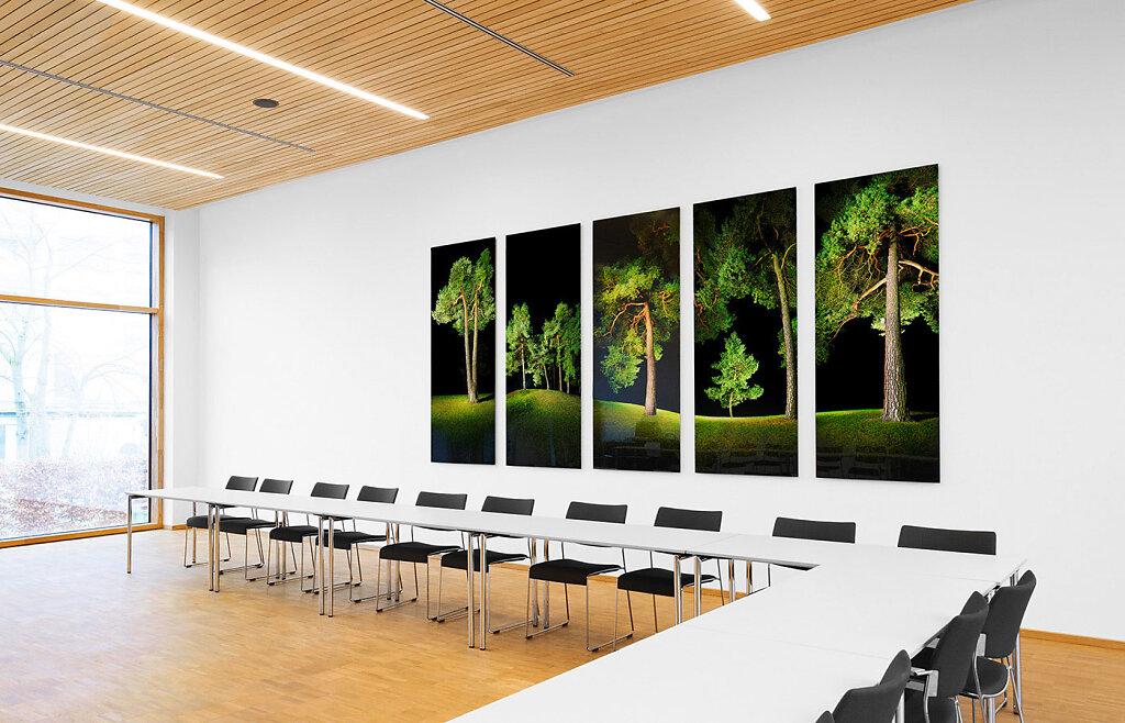 Fotokunst Bäume