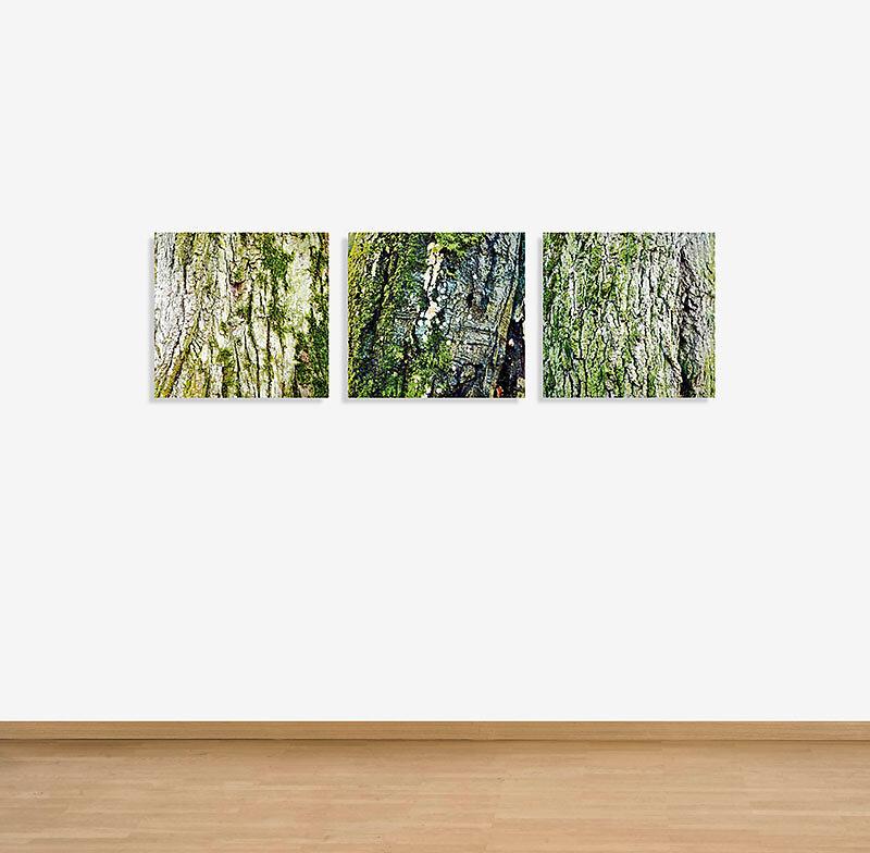 RELIEF  .  ALTE LINDE . Triptychon